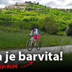 Barvita Istra
