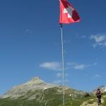 Švicarski inkasanti